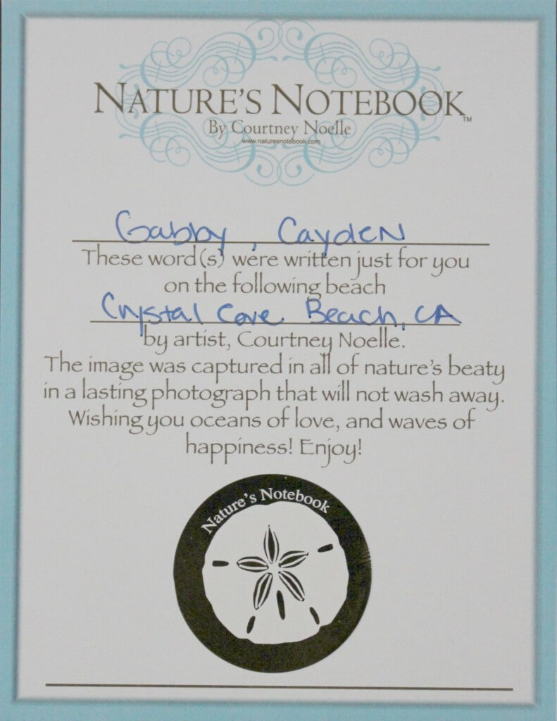 natures notebook 2