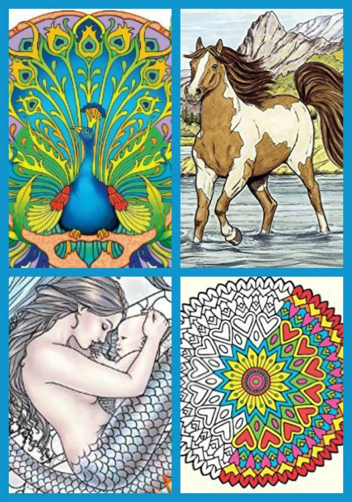 Adult Coloring Books 3