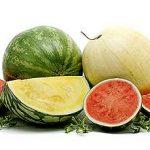 watermelon types