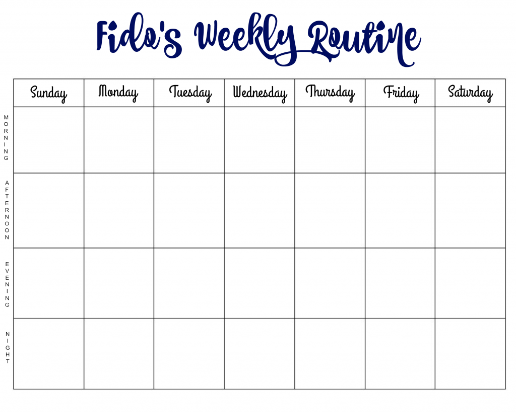 fidos-weekly-routine