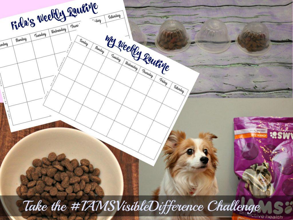 IAMSVisibleDifference Challenge